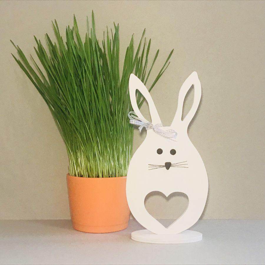 Velikonoční zajíček – velké srdce